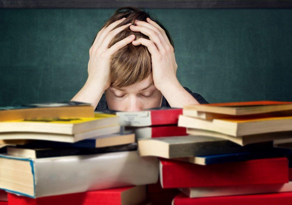 cambio en el sistema educativo es una alternativa a las malas notas