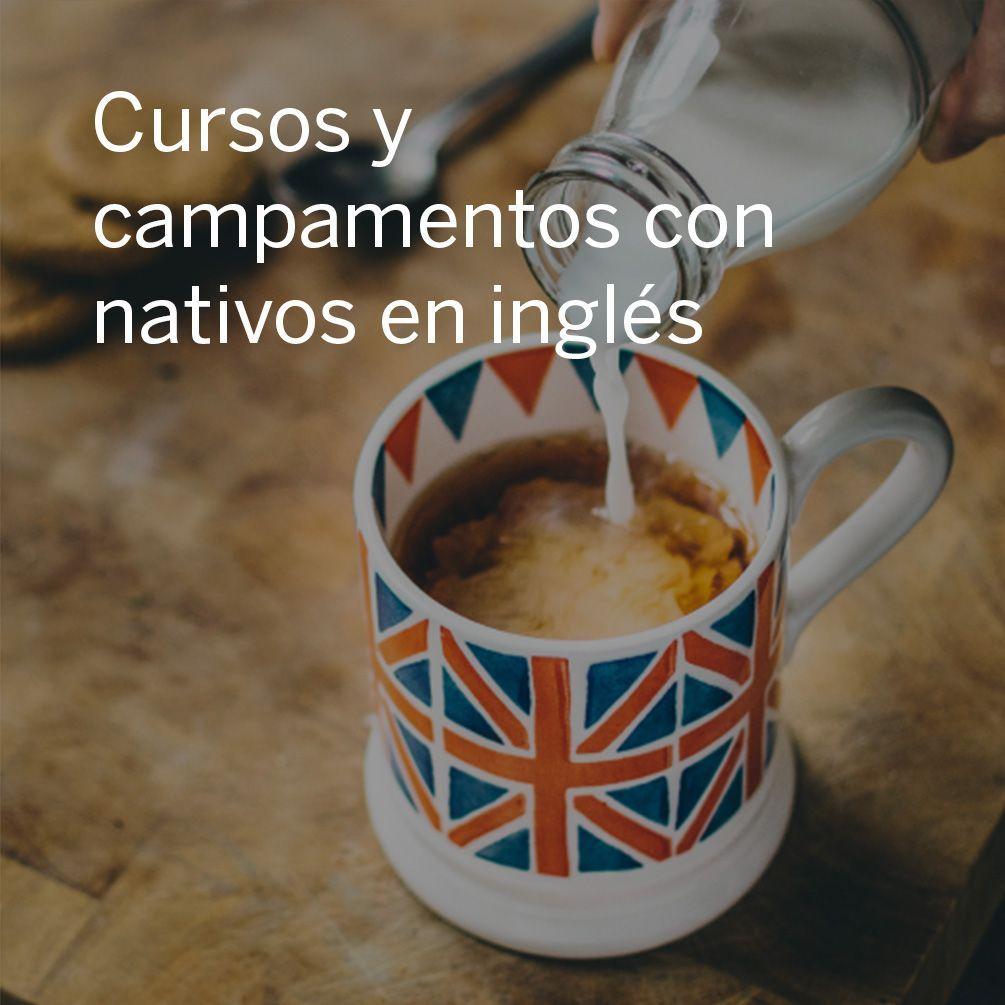 Cursos y campamentos con nativos en inglés