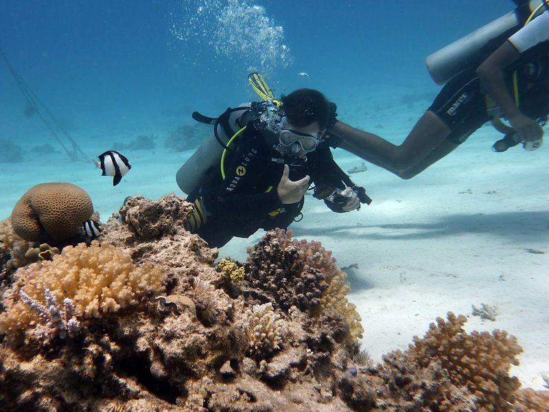 Vela-y-trabajo-en-equipo-Islas-virgenes-curso-de-ingles-ASTEX-4