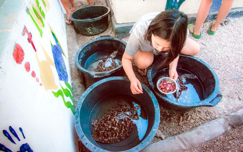 Voluntariado Bali indonesia ASTEX