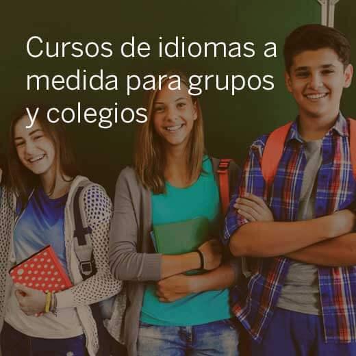 Cursos de idiomas a medida para grupos y colegios