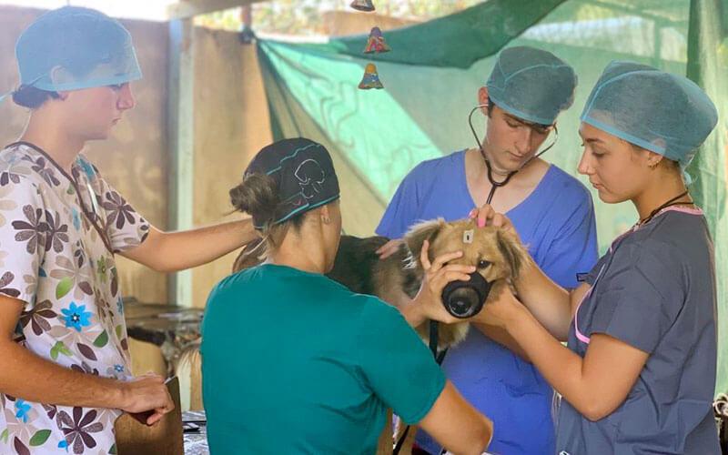 voluntariado internacional en Costa Rica para jóvenes ASTEX