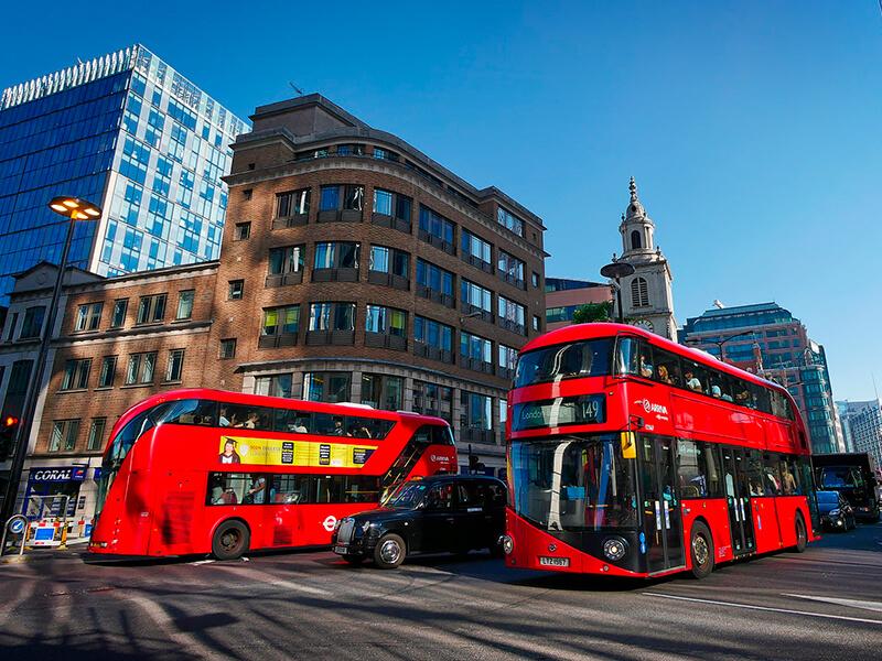 London-School-of-Economics--