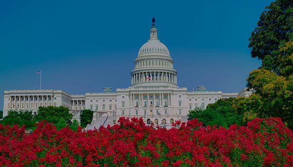 curso de ingles para adultos en USA Washington